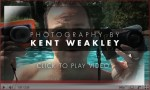 Video Photo Tip ~ Affordable Underwater Photography