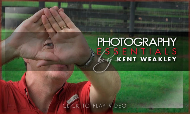 Photo Tip (video) ~ Determine Your Dominant Eye for Photography