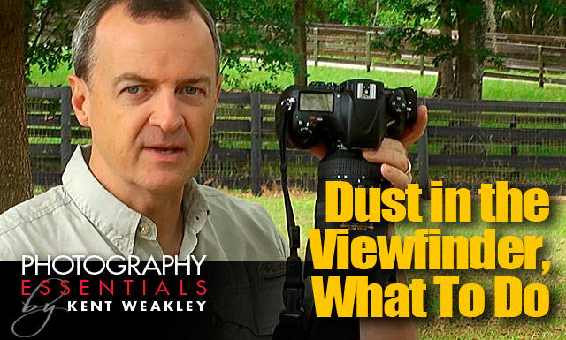 Dust in the DSLR Camera Viewfinder