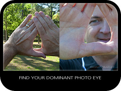 Are You Using Your Correct Eye When Photographing?
