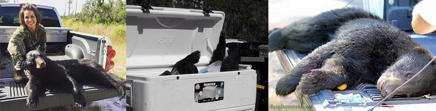 Black Bears – Florida's Wrong Solution